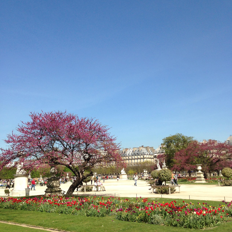 PARKS 2 - Tuileries