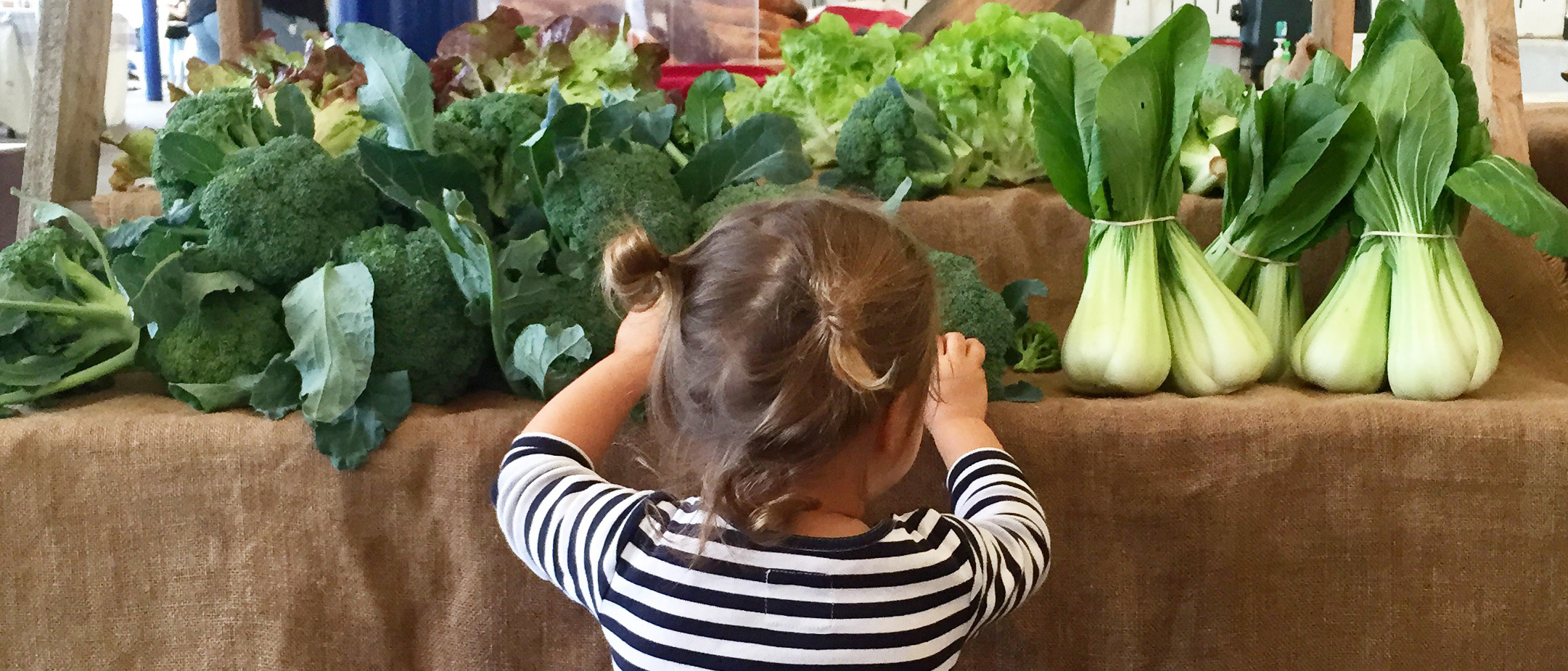 An Open Letter To Broccoli