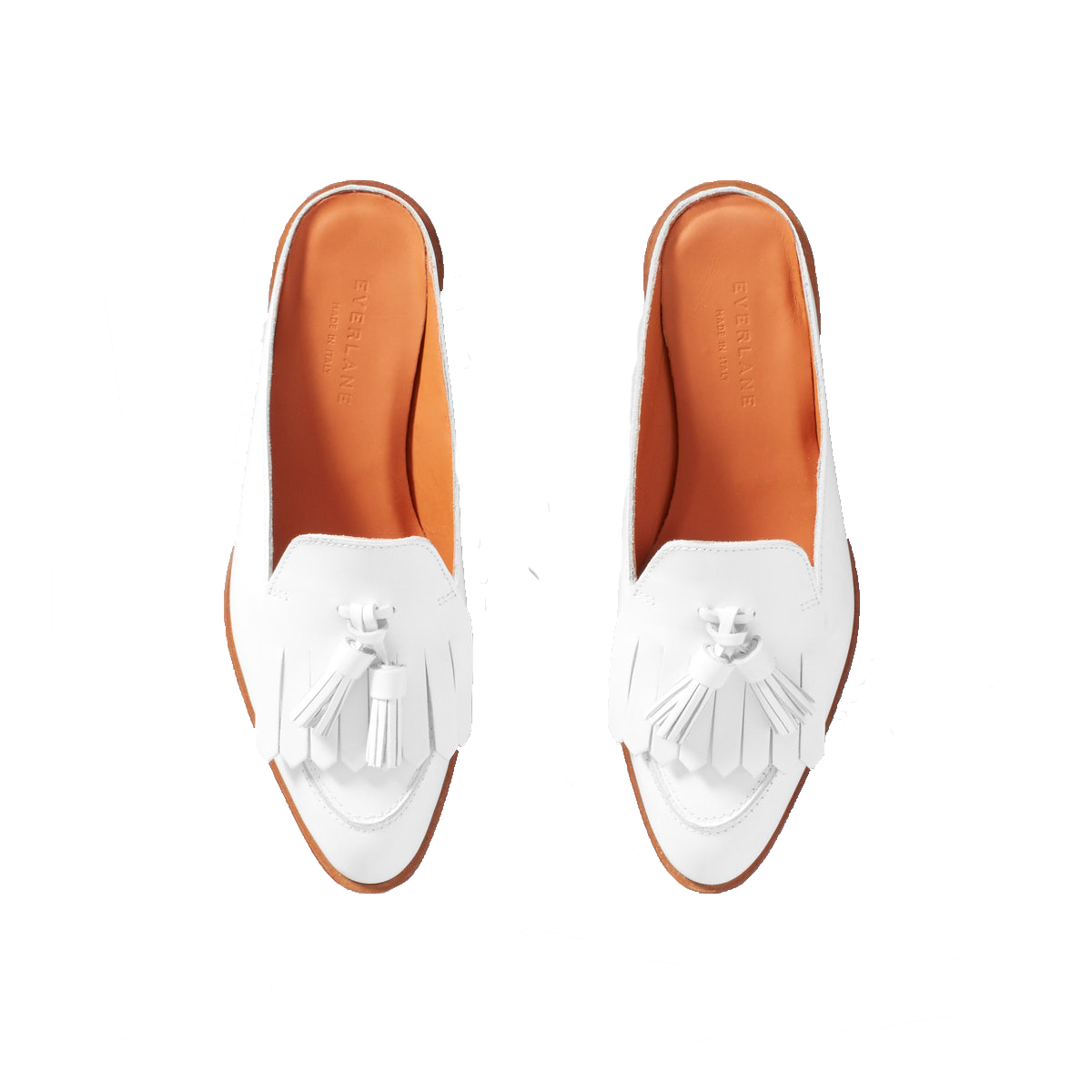 ab3b4747f9c Everlane The Modern Tassel Loafer Mule - The Grace Tales